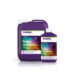 Plagron Green Sensation 250 ml + sample sugar royal 100 ml