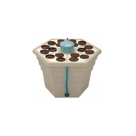 RainForest2® 3'' 12v 18 x pot 7.5cm