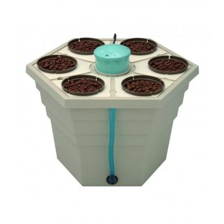 RainForest2® 6'' 12v 6 x pot 15cm