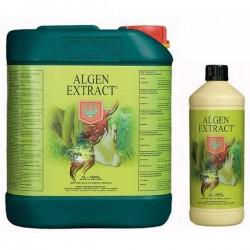 House & Garden Algen extract 250 ml