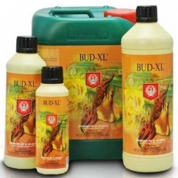 House & Garden Bud XL 250 ml