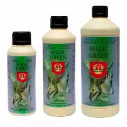 House & Garden Magic green 250 ml
