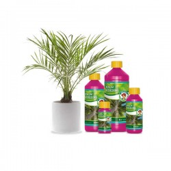 Wilma Palm voeding 250 ml