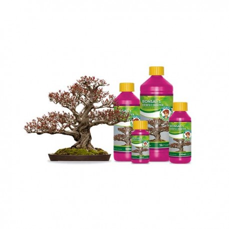 Wilma Bonsai 1 herfst / winter 100 ml