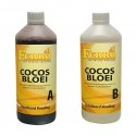 Ferro Cocos Bloei A+B
