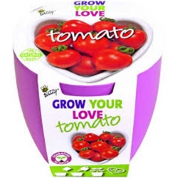 Lovebreaker Tomaat Buzzy Grow Kit