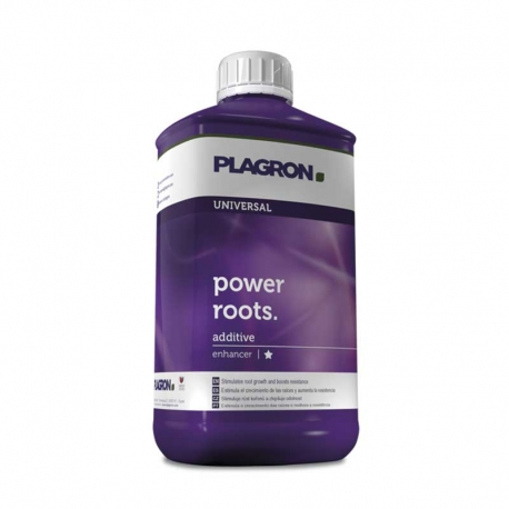 Power Roots