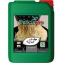 Dutch Pro Take Root Wortelstimulator 5 liter