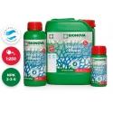 Bio Nova Veganics Bloom 5 liter