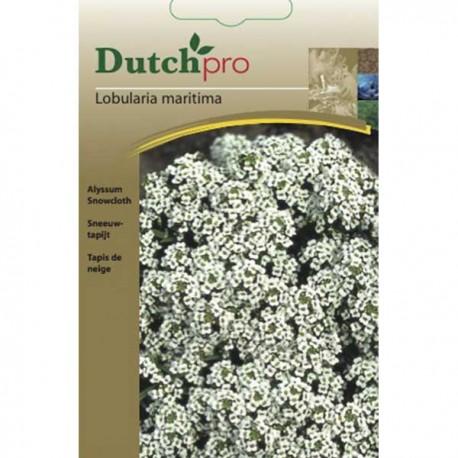 Dutchpro zaden Sneeuwtapijt