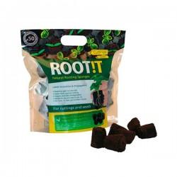 Root IT Wortelsponzen 50 stuks