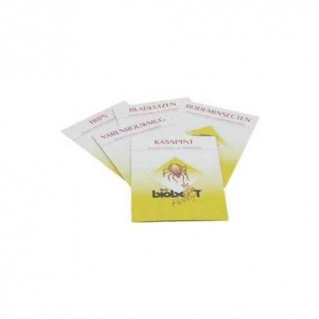Bio Best kaart Gaasvlieg tegen bladluis